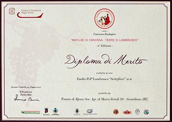 premio_matilde_di_canossa